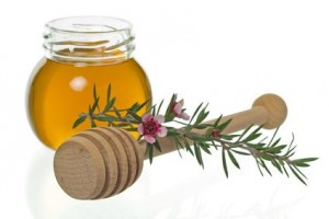 Miód Manuka - wsparcie dla zmęczonego chorobami organizmu