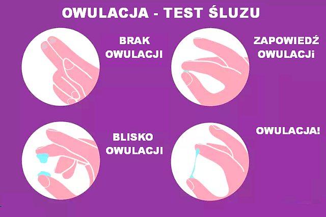 Test owulacyjny śluzu