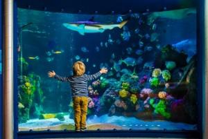 Sea Life w Hanowerze