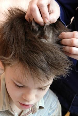 chwyć życie za włosy obsada