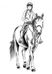 Jeździec - jeździectwo (hippika)