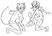 Biedronka i Kot