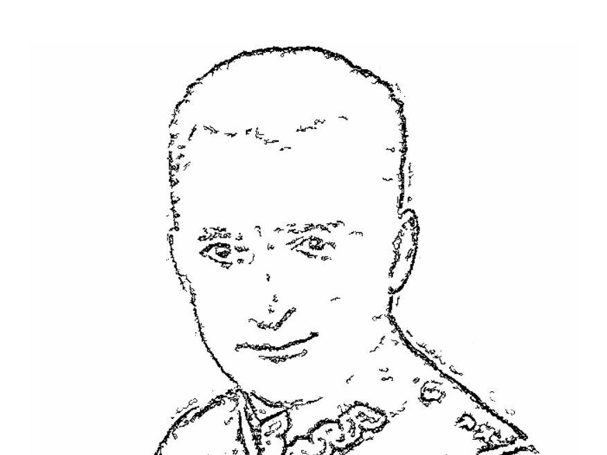 Generał August Emil Fieldorf - Nil