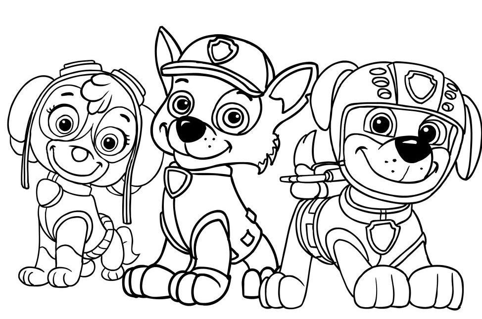Psi Patrol drużyna