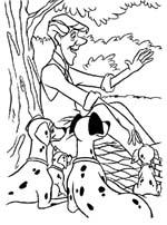 Piknij - Dalmatyńczyki