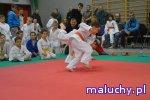 Judo Tigers Oleśnica - zajęcia sportowo - rekreacyjne dla dzieci i młodzieży - Oleśnica - zajęcia dla dzieci
