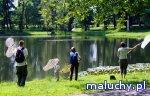 Monitoring przyrodniczy - warsztaty dla rodzin - Warszawa - zajęcia dla dzieci