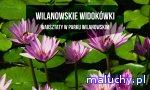 WILANOWSKIE WIDOKÓWKI | warsztaty dla rodzin - Warszawa - zajęcia dla dzieci