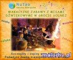 WAKACYJNE ZABAWY Z MISAMI DŹWIĘKOWYMI I GONGIEM W GROCIE SOLNEJ W KRAKOWIE - Kraków - zajęcia dla dzieci