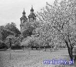 FANTASTYCZNY OGRÓD - Kraków -