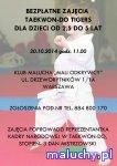 Taekwon-do Tigers - Warszawa - zaj�cia dla dzieci