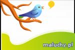 Poznaj barwny świat ptaków i weź udział w warsztatach dla dzieci - Piaseczno - zajęcia dla dzieci